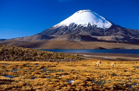 Volcan Ojos del Salado, a stratovolcano in the Andes