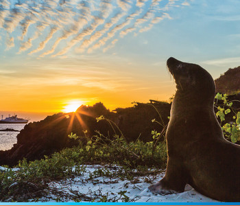 Associates 2018 Travel Program to Galapagos